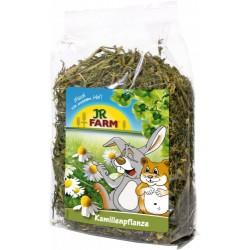 JR Farm Kamille