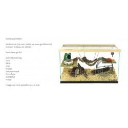 Gerbilarium of gerbil terrarium met startpakket