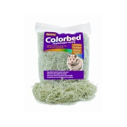Colorbed