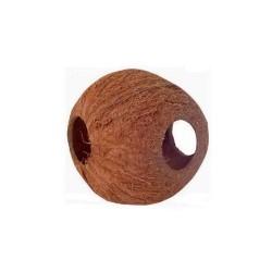 Kokosnoot 3-gaats