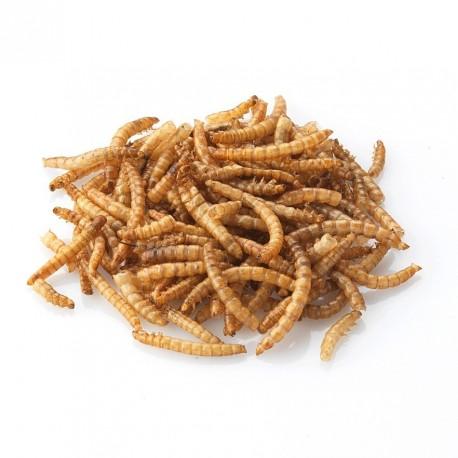 Gedroogde meelwormen 50gr (zakje)