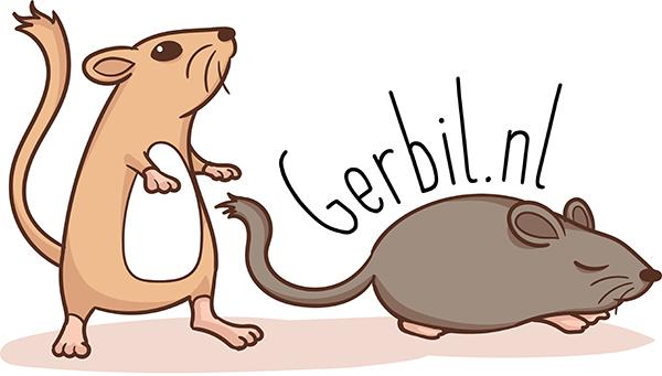 Gerbil.nl is een gerbilfokkerij en gerbilopvang met veel informatie over de gerbil, een gerbil facebookgroep en een speciale gerbil webshop.